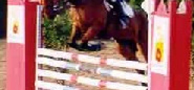 VII Festival de Saltos de Obstáculos de S. Teotónio