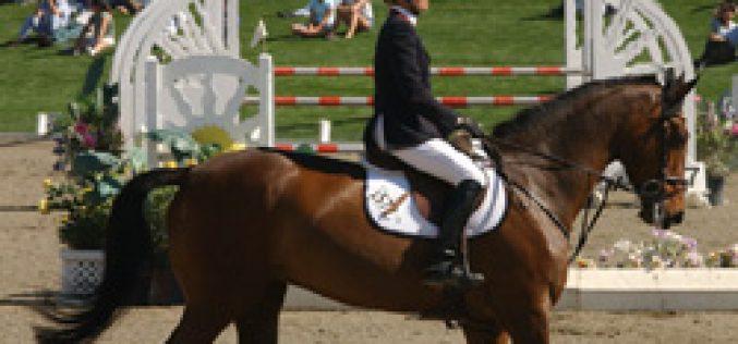 Final Individual : Campeonato da Europa de Jovens Cavaleiros e Juniores 2004