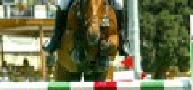 Giordano Cattapan vence o GP do CSI ** Nogaredo