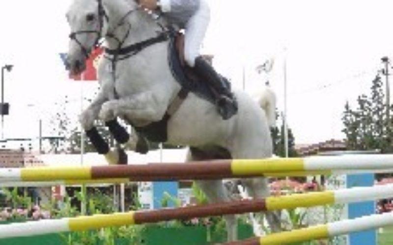 Rodrigo Sarmento vence em Vilamoura