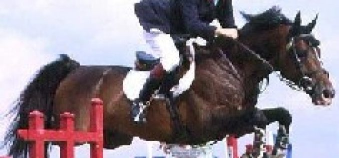 Michel Robert brilha em Spruce Meadows