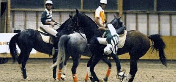 HORSEBALL: Taça de Portugal de Horseball na Golegã