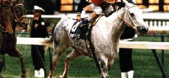 Portugal: Apostas em cavalos de corridas