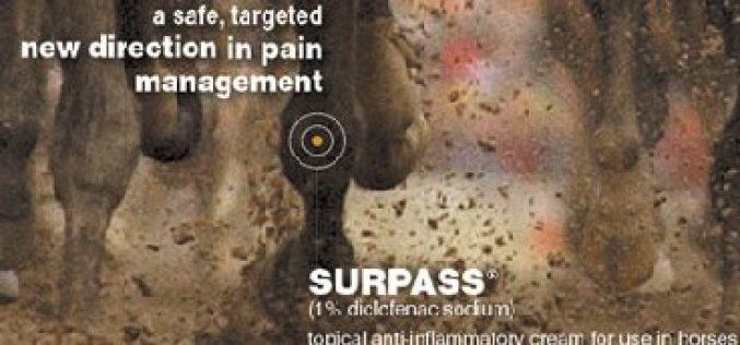 USEF permite o uso de «Surpass»