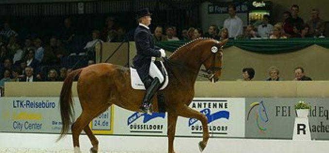Vitória para Hubertus Schmidt no CDIW de Maastrich