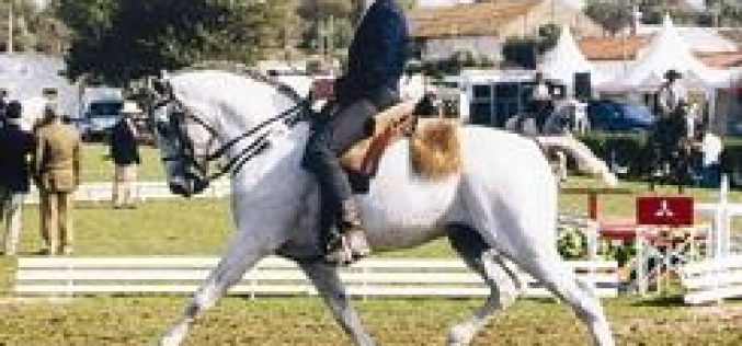 Portugal no Campeonato Europeu de Equitação de Trabalho