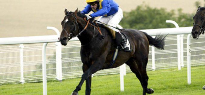 Cavalos de corrida recolhem às boxes…