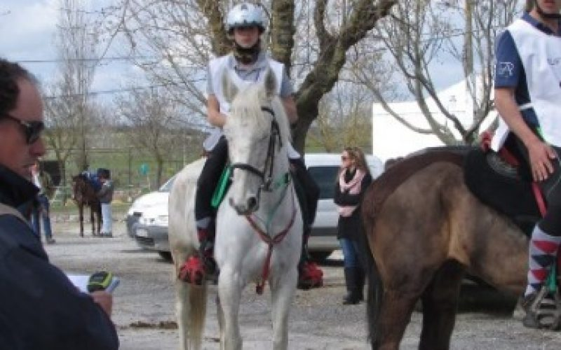 «Évora Património Mundial» – V Passeio Equestre