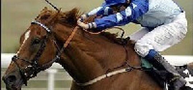 Treinador de cavalos de corrida multado em 7.500£