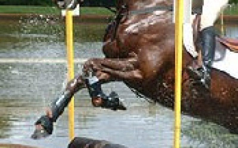 Cavaleiros de Concurso Completo lesionados…