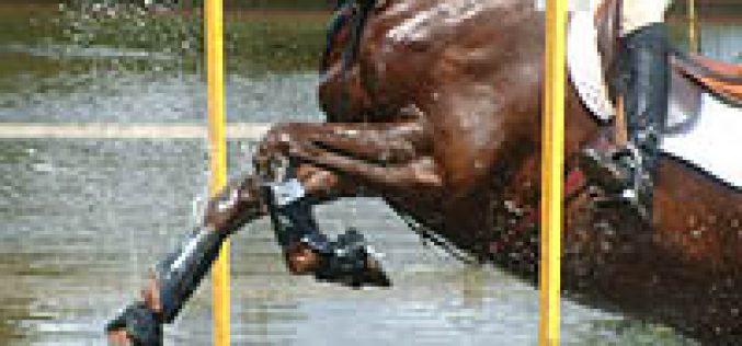 Concurso Completo: XLIX Semana Equestre Militar