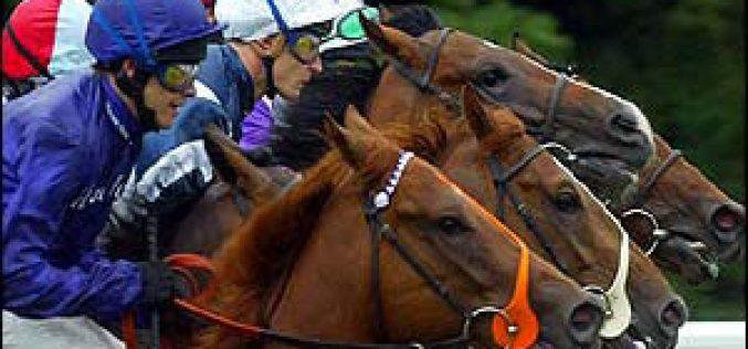 Oeste também quer corridas de cavalos