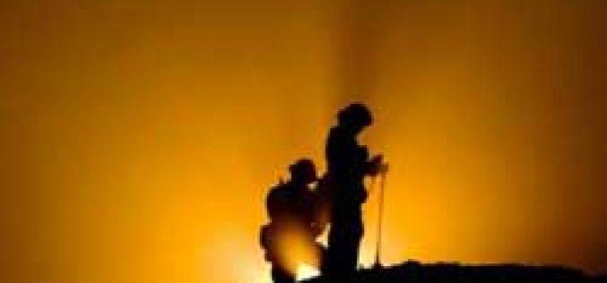 Incêndio: Centro Hípico Pine Trees evacuado…