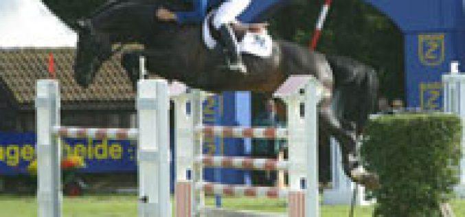 Presença portuguesa no Cto. do Mundo de Cavalos Novos