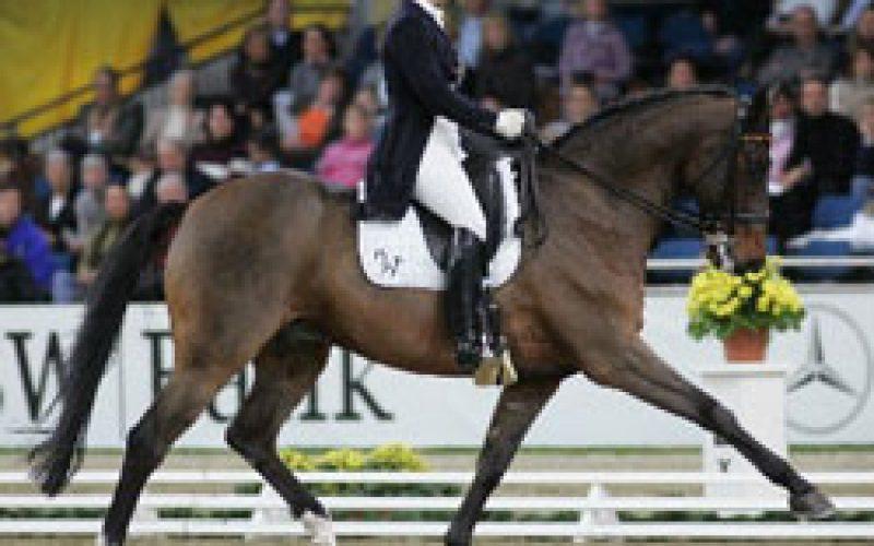 World record for Isabell Werth in Stuttgart