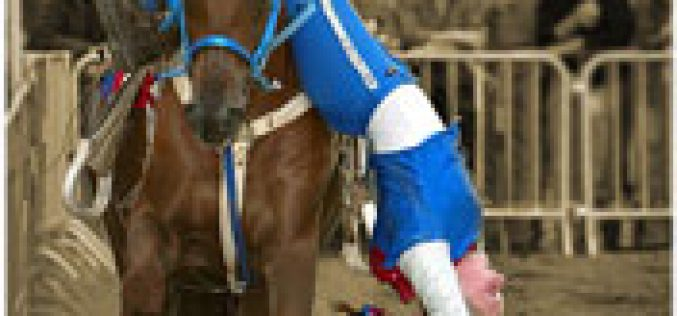 Exponor na rota dos eventos equestres