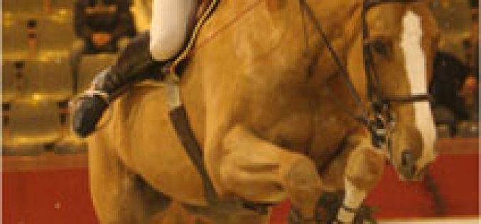CNEMA International Horse Show 2006