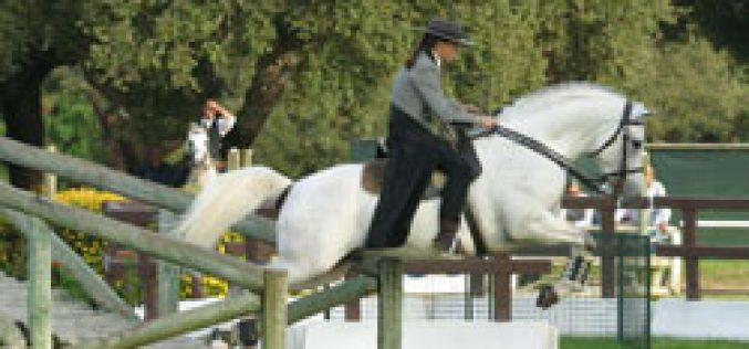 Portugal will host in 2006 the World Working Equitation Championship