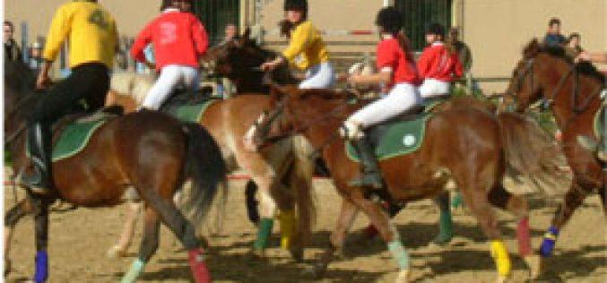 Horseball's Christmas Celebrations