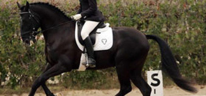 Leonor Ramalho in serious horse acident
