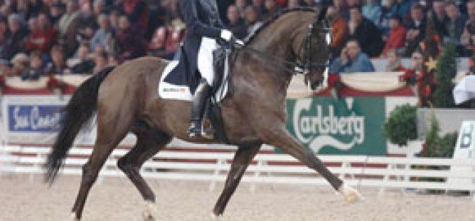Anky van Grunsven a star in Mechelen
