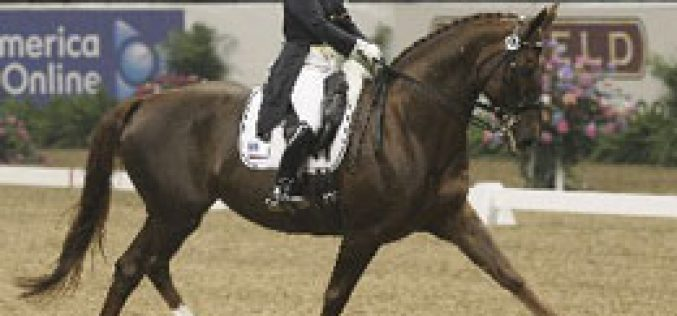 Brentina nnamed USEF Horse of the Year
