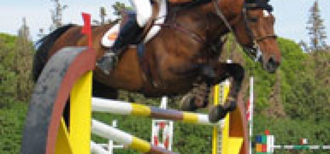 National Jockey placed 8th in Spain