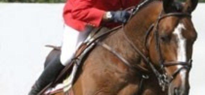 Circuito do Sol: 3ª Semana de provas para cavalos novos