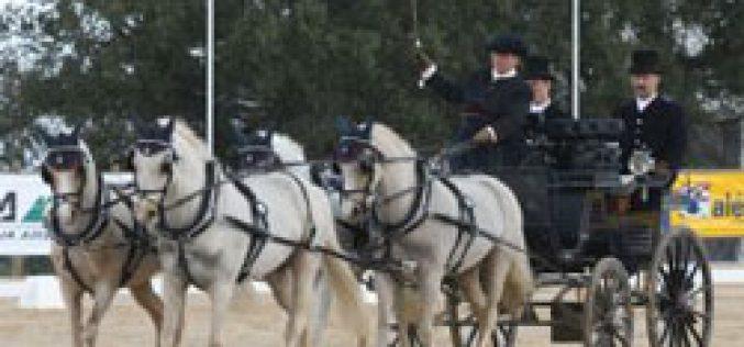 CAI-A da Ravasqueira – VI Taça Ibérica de Atrelagem
