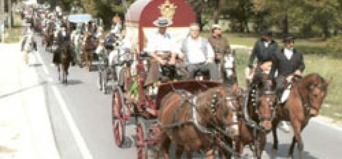 VI Romaria a Cavalo Moita – Viana do Alentejo