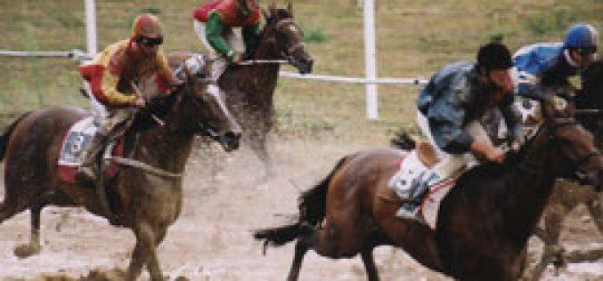 TROFA: Corrida de Cavalos atraiu seis mil pessoas