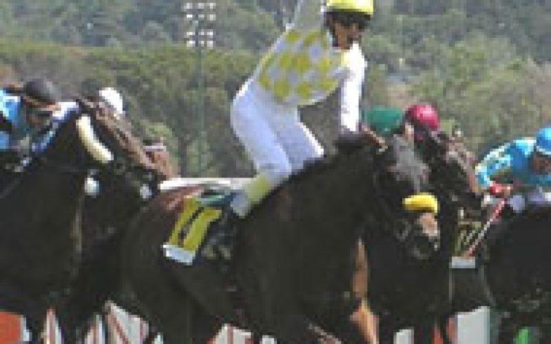 National Jockey snatches a win at Zarzuela