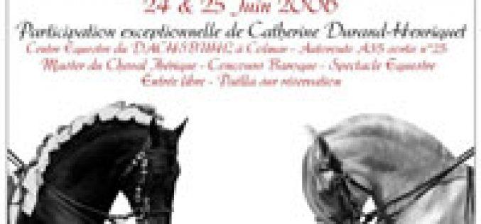 Lusitano protagonista nas Jornadas do Cavalo Barroco em França