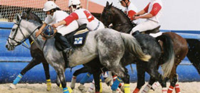 Horseball: Quinta de Sto. António claim the National Trophy Championship