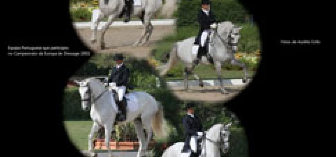 The 18th International Festival of the Lusitano Horse