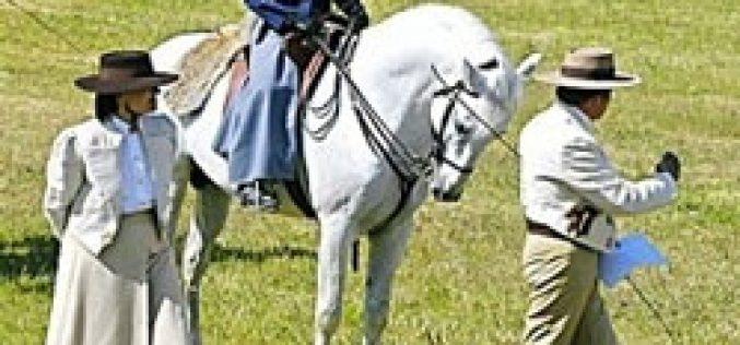 II Feira do Cavalo em Almodôvar