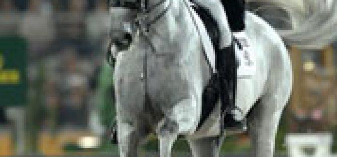 JEM: O sucesso da raça Hanoveriana