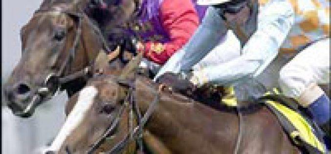 Edição 2006 do Silver Prize de Corridas de Cavalos