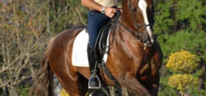 Brasil no Mundial de Equitação de Trabalho em Lisboa