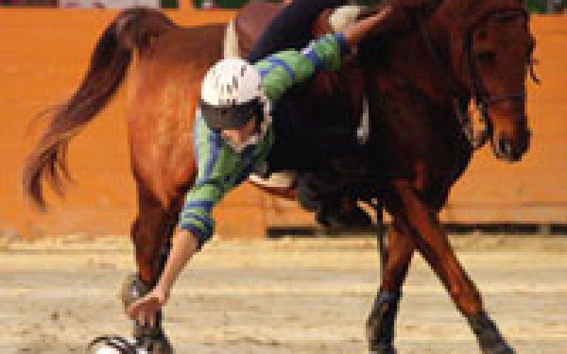 Britain to host International Horseball for Ladies