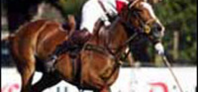 Gabriel Donoso Chile's top polo player dies in Argentina