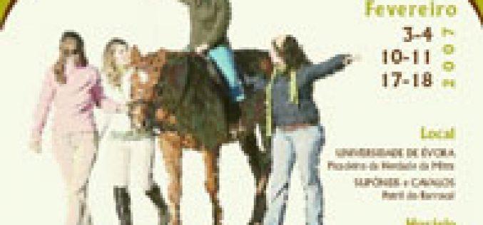 Curso de Auxiliar de Equitação Terapêutica