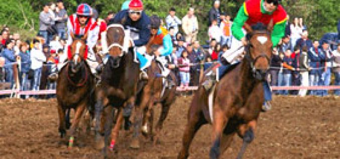 Cavalos atraíram espectadores no 25 de Abril
