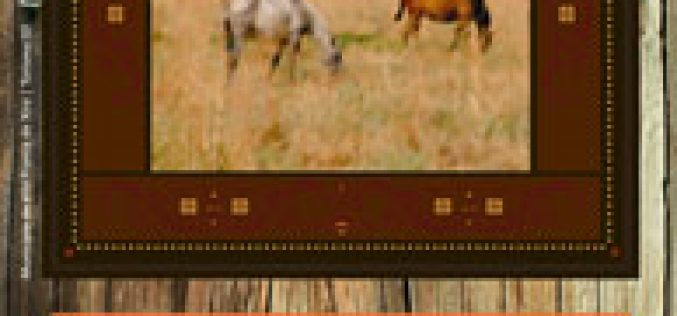 4ª Festa de Campo da Lezíria e do Cavalo