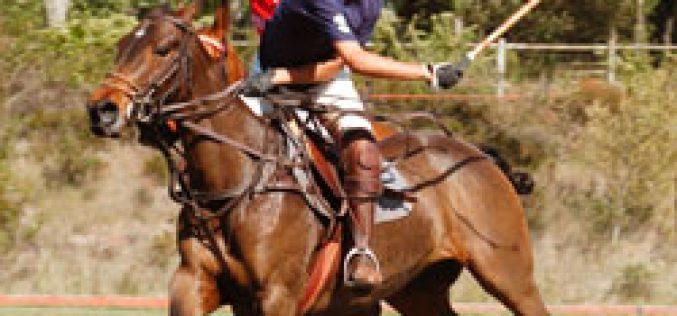 La Varzea Polo Club inaugura a temporada de Polo