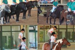 Portuguese Horseball delights the A.B.R.S. Members
