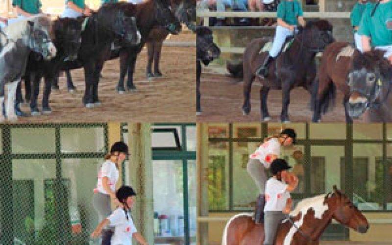 Portuguese Horseball delights the A.B.R.S. Members
