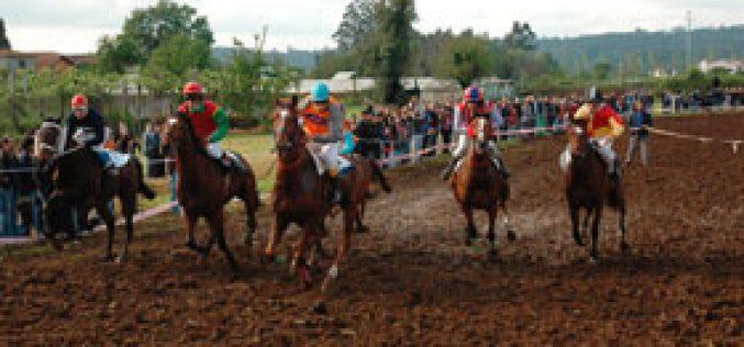 Campeonato de Galope 2007 começou na Maia