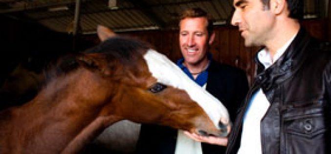 "San Patrignano: A ""blue eyed"" Horse Show"