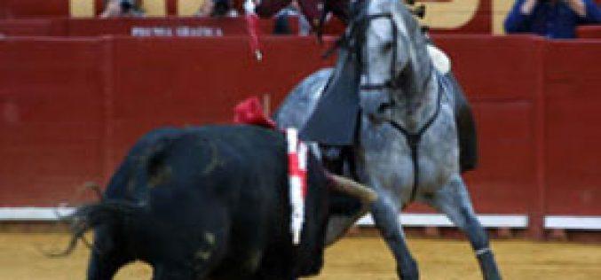 Pablo Hermoso de Mendoza sofre lesão grave…